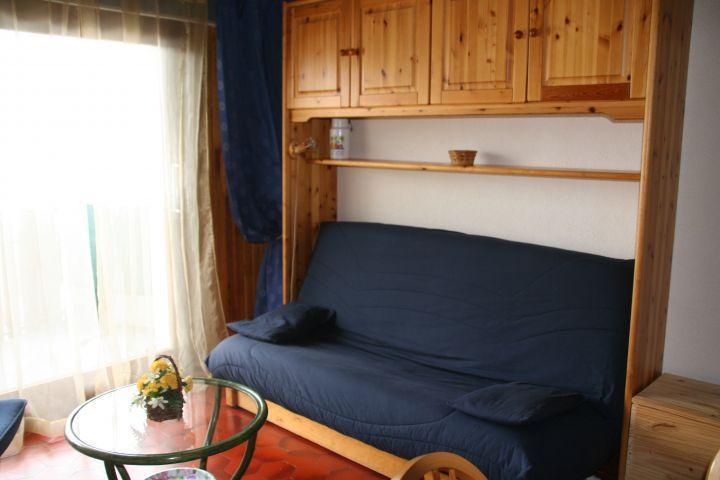 Vacaciones en montaña Estudio -espacio montaña- para 4 personas (VIC010) - Résidence Vicking - Châtel - Sofá