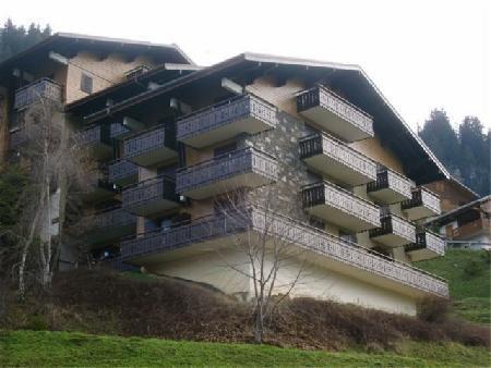 Location au ski Studio 2 personnes (YT5029) - Résidence Yéti - Châtel - Extérieur été