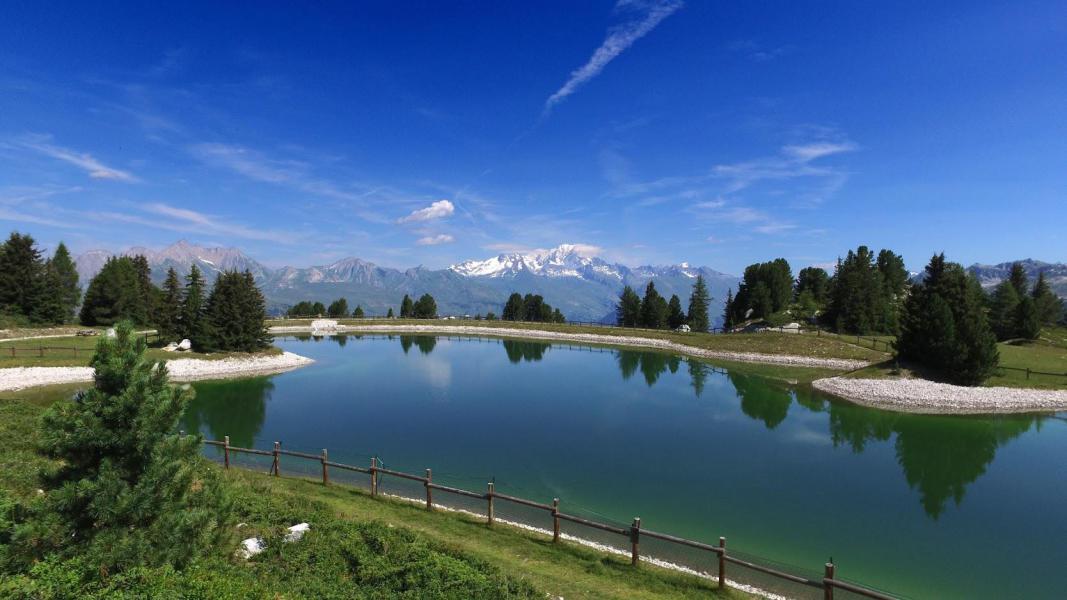 Location au ski VVF Villages l'Eterlou - Montchavin La Plagne - Extérieur été