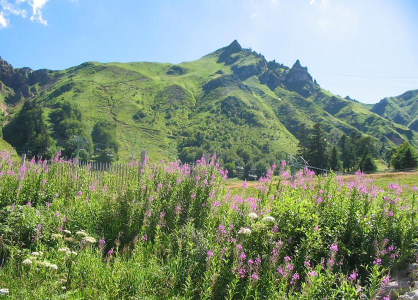 Vacances en montagne VVF Villages Massif du Sancy - Super Besse - Extérieur été
