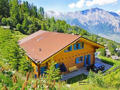 Summer accommodation Chalet Alpina P12