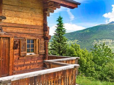 Rent in ski resort Chalet Barbara - Thyon - Summer outside