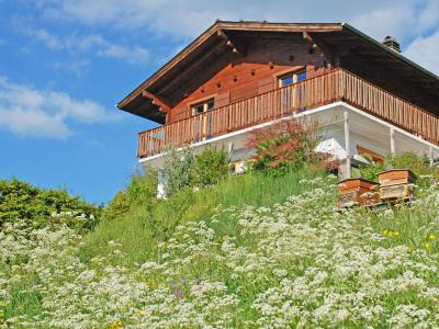 Rent in ski resort Chalet CNY01 - Veysonnaz - Summer outside