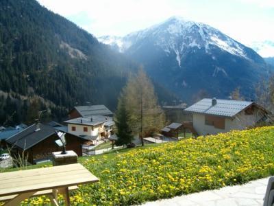 Location au ski Chalet Cote Arbet - Champagny-en-Vanoise - Extérieur été