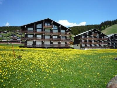 Rent in ski resort Chalet du Lac 3 - Les Saisies - Summer outside