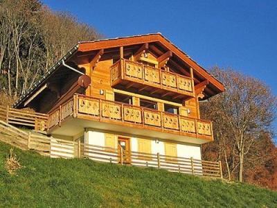 Location au ski Chalet K2 - Thyon - Extérieur été