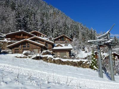 Vacances en montagne Chalet le Panorama - Chamonix - Extérieur été