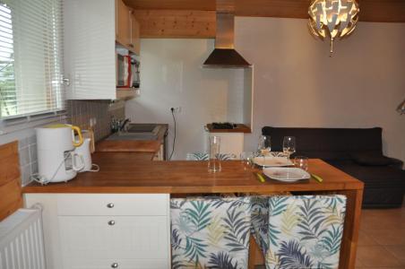 Vacances en montagne Studio 3 personnes - Chalet les Bouquetins - Châtel