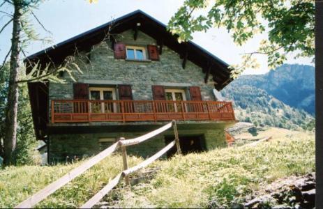 Location au ski Chalet Morel - Peisey-Vallandry - Extérieur été