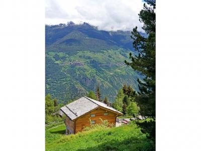 Location au ski Chalet Perle des Collons - Thyon - Extérieur été