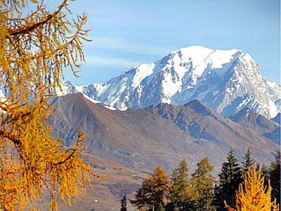 Rent in ski resort Chalet Peudral - La Plagne - Summer outside