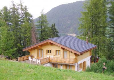 Location au ski Chalet Tanya - La Tzoumaz - Extérieur été