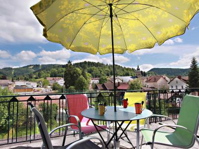 Holiday in mountain resort 2 room apartment 4 people (1) - Kelche - Gérardmer - Summer outside