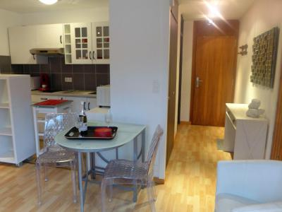 Holiday in mountain resort 1 room apartment 2 people (8) - L'Aiguille du Midi - Chamonix