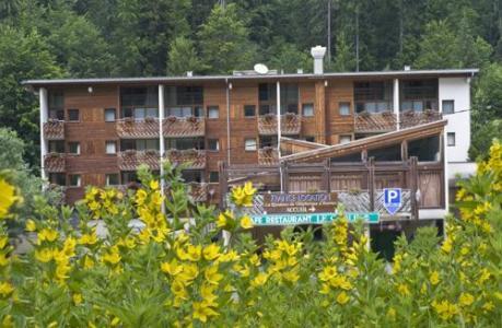 Location au ski La Residence Du Telepherique - Morzine - Extérieur été