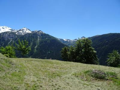 Location au ski Studio 4 personnes (03) - La Résidence le Parc - Peisey-Vallandry - Extérieur été