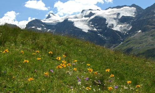 Holiday in mountain resort Les Balcons de la Vanoise - Termignon-la-Vanoise - Summer outside