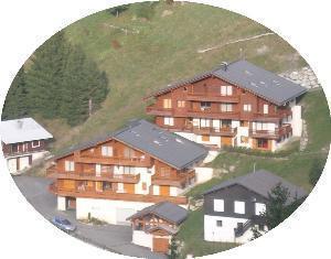 Location au ski Appartement 4 pièces 6 personnes (195) - Les Chalets De La Cascade - Arêches-Beaufort - Extérieur été