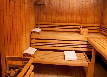 Vacances en montagne Les Chalets du Berger - La Féclaz - Sauna