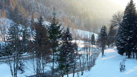 Urlaub in den Bergen 2-Zimmer-Appartment für 6 Personen (013) - Résidence Alpina - Le Grand Bornand
