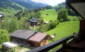 Location au ski Appartement 3 pièces 5 personnes (12) - Residence Alpina - Arêches - Extérieur été