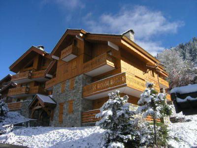 Vacances en montagne Résidence Aubépine - Méribel