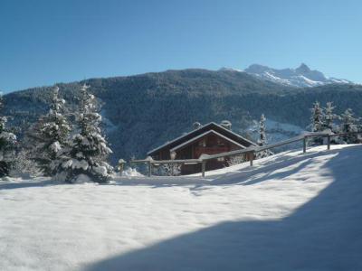Vacances en montagne Résidence Bergerie des 3 Vallées D - Méribel