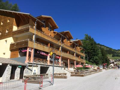 Rent in ski resort Résidence Central Park - Val d'Allos - Summer outside