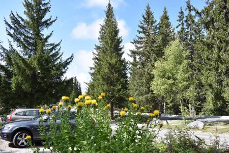 Vacances en montagne Résidence Eperonnelles - Méribel