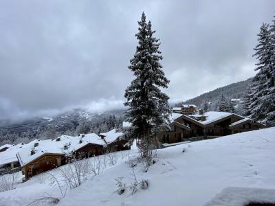 Vacances en montagne Appartement 2 pièces 4 personnes (722) - Résidence Grand Bois - La Tania - Extérieur été