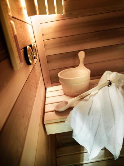 Vacances en montagne Résidence L'Alpaga - La Toussuire - Sauna