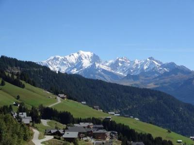 Rent in ski resort Résidence la Perle des Alpes H - Les Saisies - Summer outside