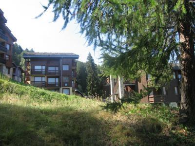Vacances en montagne Appartement 2 pièces 4 personnes (008) - Résidence le Dé 3 - Montchavin La Plagne - Extérieur été