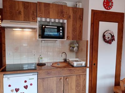 Vacances en montagne Appartement 2 pièces 4 personnes (JR9) - Résidence le Joran - Châtel - Kitchenette