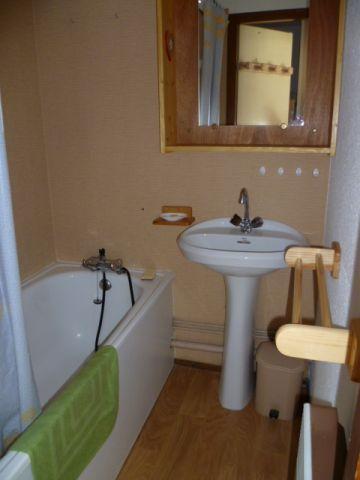 Vacances en montagne Appartement 2 pièces 4 personnes (201) - Résidence le Linga - Châtel - Salle de bains