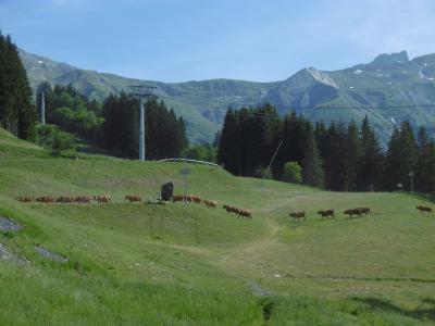 Vacances en montagne Résidence le Pierrafort - Valmorel