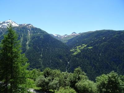 Vacances en montagne Appartement 2 pièces 6 personnes (057) - Résidence le Rey - Peisey-Vallandry - Extérieur été