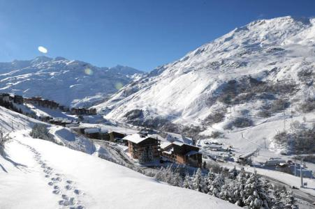 Holiday in mountain resort Résidence les Asters B2 - Les Menuires -