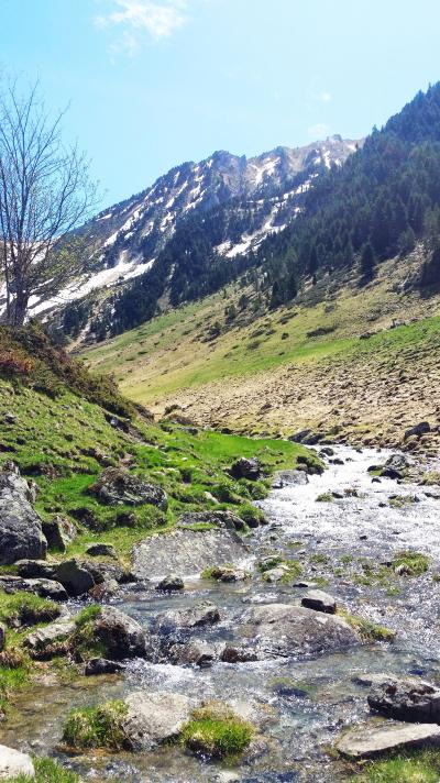 Vacances en montagne Résidence les Chalets d'Estive - Cauterets - Extérieur été