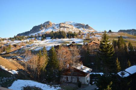 Urlaub in den Bergen Studio für 4 Personen (08) - Résidence les Cîmes - Le Grand Bornand