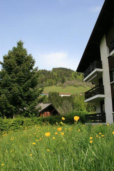 Holiday in mountain resort 3 room apartment 6 people (001) - Résidence les Dodes - Le Grand Bornand