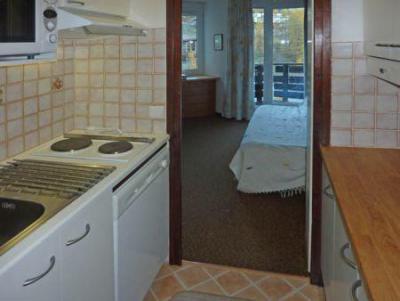 Holiday in mountain resort Studio sleeping corner 4 people (103) - Résidence les Gradins - Les Orres - Kitchen