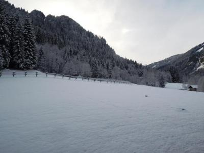 Vacances en montagne Appartement 2 pièces cabine 6 personnes (9) - Résidence les Myrtilles - Châtel - Coin repas