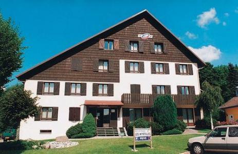 Location au ski Residence Les Myrtilles - Gerardmer - Extérieur été