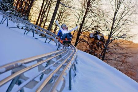 Vacances en montagne Résidence les Vallées - La Bresse - Autres
