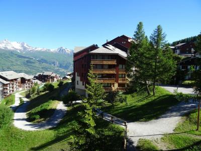Location au ski Studio cabine 3 personnes (617) - Residence Michailles - Peisey-Vallandry - Extérieur été