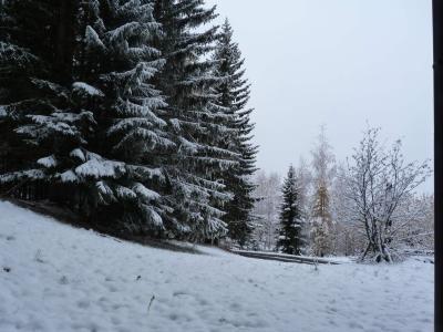 Vacances en montagne Studio mezzanine 4 personnes (203) - Résidence Mirantin 2 - Les Arcs - Chambre