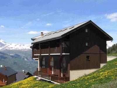 Location au ski Résidence Petite Ourse A - Peisey-Vallandry - Extérieur été